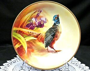 Limoges France Hand Painted Bird Plate Artist Signed Charger Iris Floral