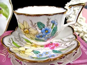 Salisbury Tea Cup And Saucer Floral Painted Daffodil Fairy Shape Teacup Pattern
