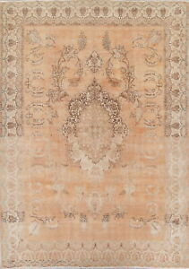 Geometric Antique Muted Persian Oriental Hand Knotted Distressed 10x14 Large Rug