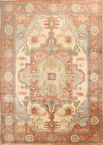 Large 100 Vegetable Dye Geometric 10x14 Heriz Serapi Persian Oriental Area Rug
