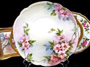 Limoges France Platter Charger Painted Blossoms Floral Plate Painted