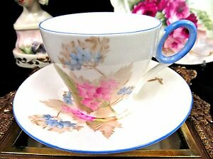 Shelley Tea Cup And Saucer Painted Floral Butterfly Pattern Teacup
