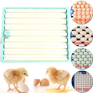220v Chicken Eggs Incubator Automatic Duck Quail Bird Poultry Egg Incubator Tray