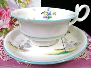 Shelley Tea Cup And Saucer Balloon Tree Painted Pattern Teacup Georgian Shape