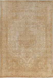 Antique Distressed Area Rug Hand Knotted Muted Worn Oriental Carpet 8x11
