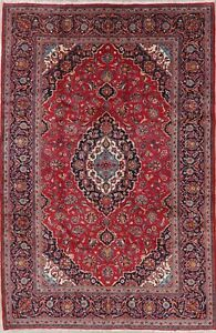 Vintage Traditional Floral Persian Area Rug Hand Made Oriental Wool Carpet 7x10
