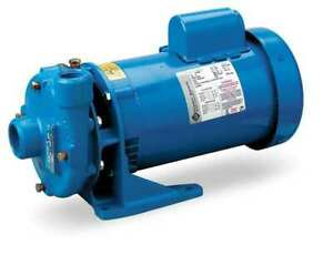 Goulds Water Technology 1bf22012 Cast Iron 2 Hp Centrifugal Pump 115 230v