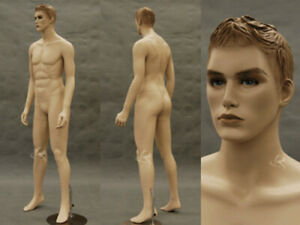 Male Mannequin Manequin Manikin Dress Form Display md km26f