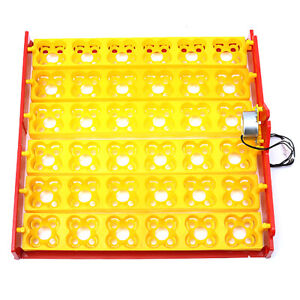 36pcs Egg Poultry Chicken Egg Incubator Turner Tray Turning Motor Temperature Co