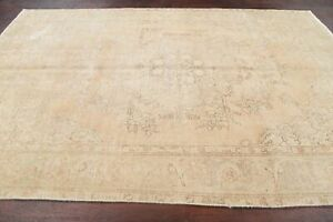 Antique Geometric Muted Evenly Worn Distressed Area Rug Hand Knotted Wool 7 X10