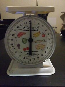 Vintage American Family Scale 25lb Kitchen Counter Metal Food Scale White