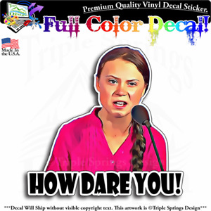 How Dare You Greta Thunberg Vinyl Decal Sticker Window Truck Car Wall Laptop