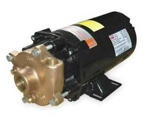 Dayton 2zwt1 Bronze brass 1 Hp Centrifugal Pump 208 230 460v