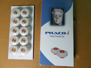 Phaco Practice Eye Pack Of 100 Pcs Genuine Ophthalmic Teaching Device