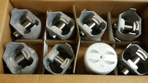 262 Chevy V 8 Forged Pistons 1975 1976 L2438f Trw Standard Bore