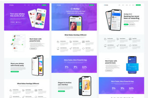 Elementor Template App Landing Page Template