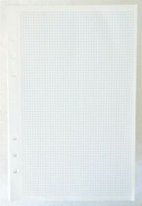 Vintage Mini Small Graph Paper 30 Sheets 8 5 X 5 5 6 Hole Punched Pad