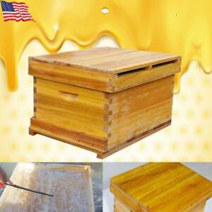 Thickened Honeycomb Box Bee Beehive Boiled Wax Nest Full Set Of Beekeeping Tools