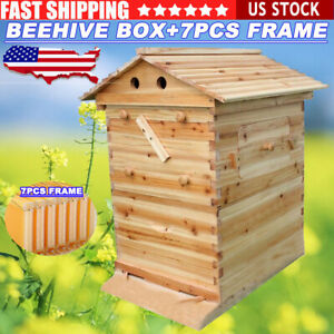 Newest Beekeeping Wooden House Box Automatic Harvest Honey 7 Beehive Frames Kit