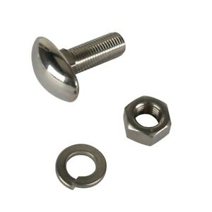 Speedway 1933 40 Ford Stainless Oval Head Bumper Bolts
