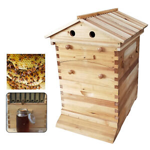 Durable Bee Hive Wood House Auto Beehive Frame Comb Beekeeping Wooden Box Kit Us