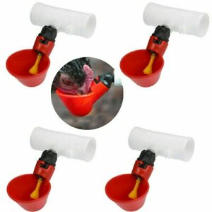 Chicken Water Feeders Plastic Automatic Supplies Accessory 4pcs Poultry