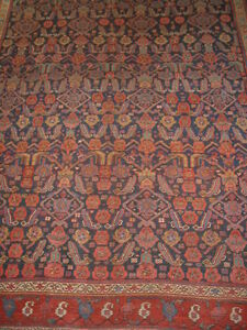 Antique Kurd Bidjar 8 9 X10 5 Collectors Rug B 7979