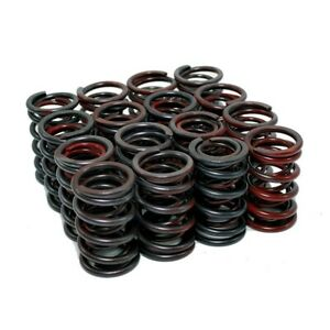 New Chevy 1 44 Dual Coil Valve Springs 525 600 Lift For Solid Lifter Cams Sbc