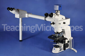 Zeiss Axiolab A1 Side By Side Dual Head Teaching Microscope Perfect Condition