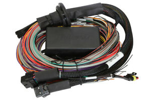 Haltech Elite 1500 2 5m 8 Ft Premium Universal Wiring Harness Only