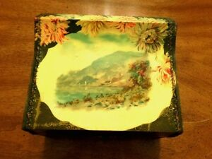 Antique Victorian Celluloid Dress Box W Scenic Design Flowers Exc