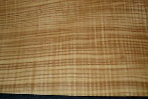 Olive Ash Raw Wood Veneer Sheets 7 X 25 Inches 1 42nd Thick 6774 6