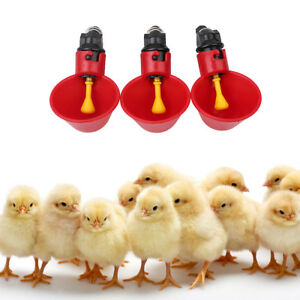 Good 5pack Poultry Water Drinking Cups Chicken Hen Plastic Automatic Drinker Usa