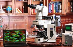 Olympus Bx51 Upright Fluorescence Research Microscope 1 Year Warranty