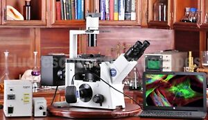 Olympus Ix51 Inverted Fluorescence Phase Contrast Microscope 1 Year Warranty