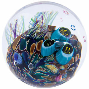Winston Porter Raby Cool Pool Paperweight