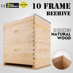 20 Frame Double Beehive 20 X Frames Brood Bee Box Nz Pine Bee Hive Honey Bee