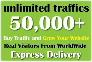 Usa Premium Website Traffic