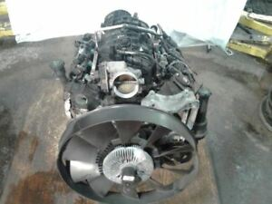 Engine 2007 2008 07 08 Gmc Envoy Chevy Trailblazer 5 3l V8 Motor Lh6 Run Tested