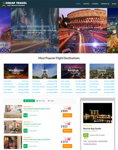 Automated Hotels And Flights Travel Website Business For Sale Newbie Friendly