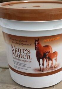 New Mare s Match Foal Milk Replacer Land O Lakes 8 Lb Pound Pail