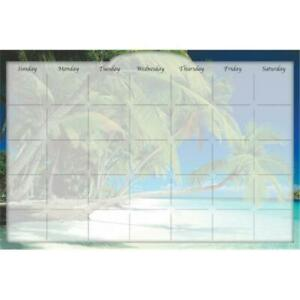 Biggies Dc bhi 48 Dry Erase Stickie Monthly Calendar Beach Island