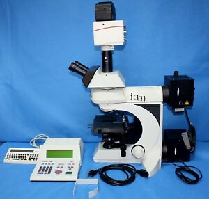 Leica Dmlb Fluorescence Microscope Camera 10x 25 Eyepieces No Objectives