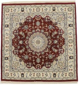 Amazing Hand Knotted Square Unique Nain Indian Red Area Rug Oriental Carpet 4x4
