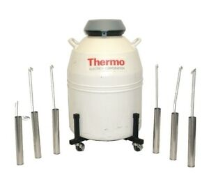 Thermo 8037 Liquid Nitrogen Dewar Cryo Storage Tank Cryogenics