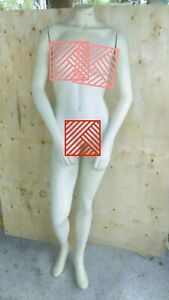 Mannequin Female Body Full Body