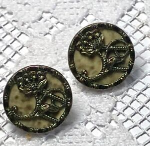 2 Victorian Picture Buttons Flower Design With Marbeled Celluloid Background