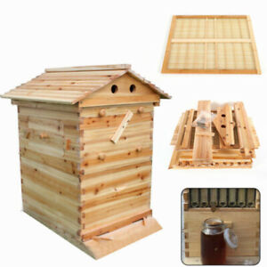 Bee Hive House Wooden Box For Auto Raw Frame Deluxe Bee Hive Starter Kit
