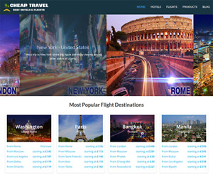 Professional Hotel Travel Website Business For Sale Profitable Easy To Manage