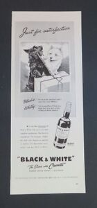 Original 1942 Print Ad BLACK & WHITE Whiskey Scotch Terriers Westies Dogs